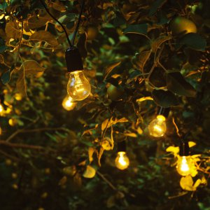 "Ретро гирлянда из лампочек накаливания 15 м 25 W на дереве. ""Pion Bouton"" - Киев."
