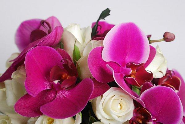 Фиолетовый букет невесты из орхидеи и роз крупным планом.