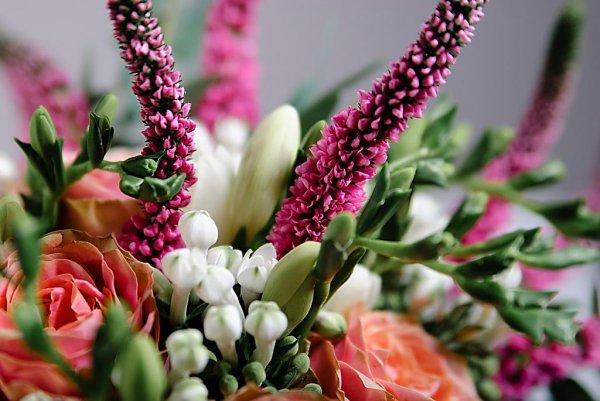 Цветок вероника в букете растрепыше