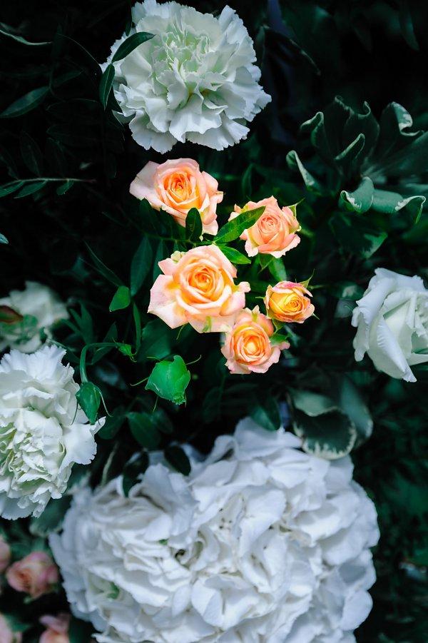 Розы и гортензия в свадебной арке