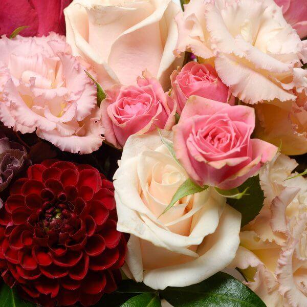 Кремовые розы, гвоздики и бордовые георгины в букете