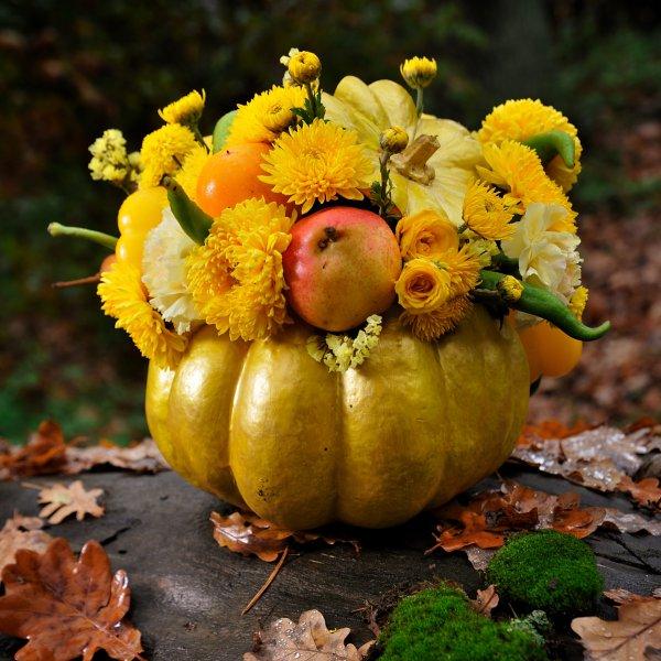 Осенняя композиция с цветами и фруктами в тыкве в осеннем лесу